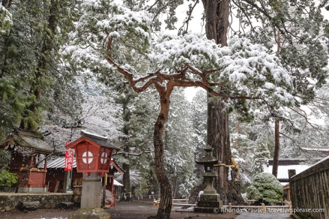 travelyesplease.com | Fujiyoshida Sengen Shrine- The Traditional Starting Point for Climbing Mt. Fuji