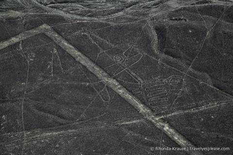 travelyesplease.com | Nazca Lines Flight- Flying Over Peru's Mysterious Geoglyphs