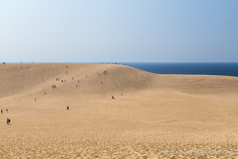 travelyesplease.com | The Tottori Sand Dunes- Enjoying Japan's Largest Dunes