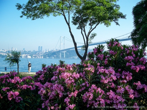 travelyesplease.com | One Day in Istanbul- How to Spend 24 Hours in Turkey's Largest City