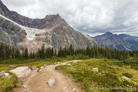 Hiking Cavell Meadows Trail- Jasper National Park