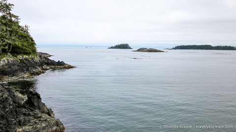 travelyesplease.com | The Ultimate Vancouver Island Road Trip