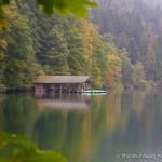 Photo of the Week: Alpsee Lake, Germany