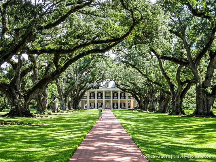 Oak Alley Plantation: Photo of the Week | Travel? Yes Please!