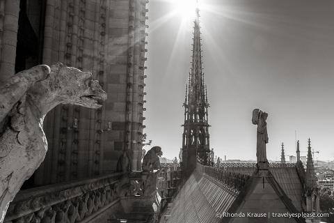 travelyesplease.com | Paris in Black & White- Photo Series | Notre Dame