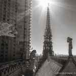 Paris in Black and White- Photo Series