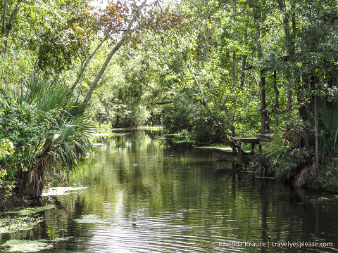 travelyesplease.com | 3 Fun New Orleans Day Trips- Swamps, Battlefields, and Plantations