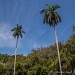 Hiking Guanayara National Park, Cuba