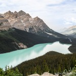 Photo of the Week: Peyto Lake, Banff National Park