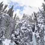Winter in Jasper- A Frosty Photo Series