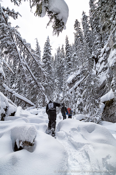 travelyesplease.com | Snowshoeing in Jasper- Our First Experience and Why You Should Try it Too!