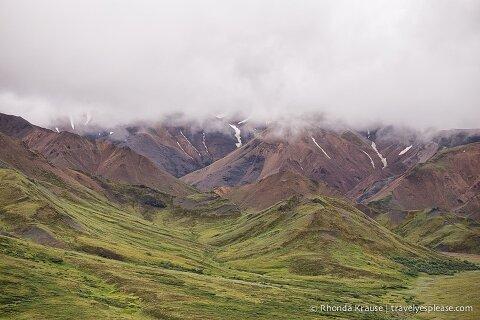 travelyesplease.com | Denali National Park- A Living Masterpiece