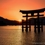 Photo of the Week: Sunset at Miyajima's Great Torii