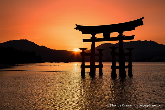 Miyajima's Great Torii at Sunset: Photo of the Week