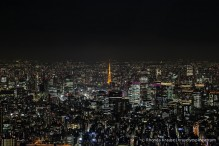 travelyesplease.com| Tokyo at Night- Photo Series