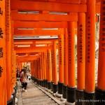 Fushimi Inari Shrine- A Mountain Path Like No Other