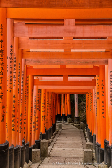 travelyesplease.com | Fushimi Inari Shrine- A Mountain Path Like No Other