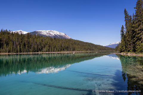 travelyesplease.com | Hiking Jasper's Valley of the Five Lakes