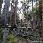 The Okunoin- Koyasan's Ancient Cemetery