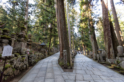 travelyesplease.com | The Okunoin- Koyasan's Ancient Cemetery