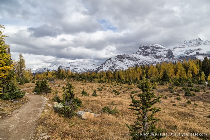 travelyesplease.com   Larch Valley Hike- Lake Louise, Banff National Park