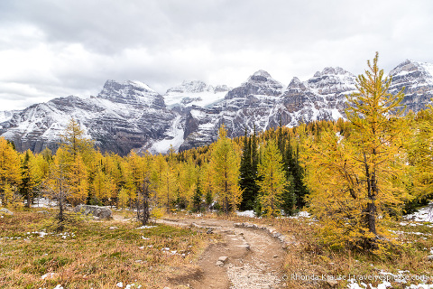 travelyesplease.com | Larch Valley Hike- Lake Louise, Banff National Park