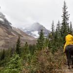 Horseback Ride to the Plain of Six Glaciers Tea House- Lake Louise