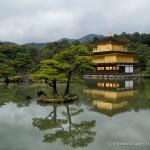 Kinkaku-ji Temple- Kyoto's Golden Pavilion