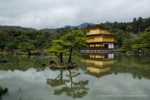 travelyesplease.com | Kinkaku-ji Temple- Kyoto