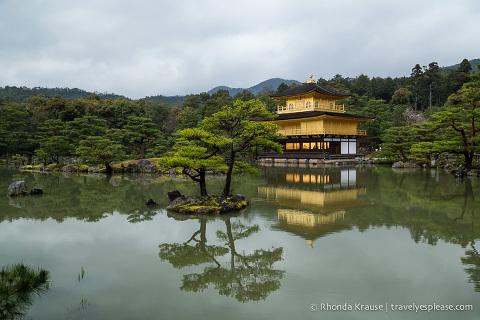 travelyesplease.com | Kinkaku-ji Temple- Kyoto's Golden Pavilion