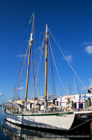 travelyesplease.com | Key West Sunset Sail- The Appledore V Schooner