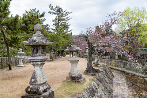 travelyesplease.com | Miyajima Island- Exploring One of Japan's Most Scenic Spots