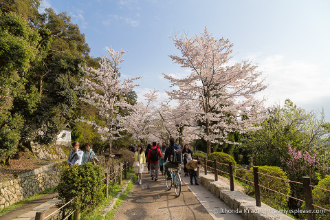 travelyesplease.com | The Path of Philosophy- Kyoto's Prettiest Cherry Blossom Walk