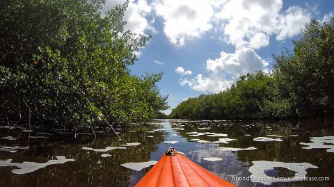 travelyesplease.com | Exploring Everglades National Park