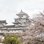 Himeji Castle- A National Treasure of Japan