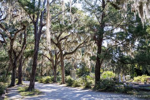 travelyesplease.com | The Haunting Beauty of Bonaventure Cemetery, Savannah