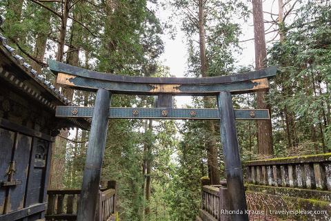 travelyesplease.com | Nikko Toshogu Shrine- Japan's Most Lavishly Decorated Shrine