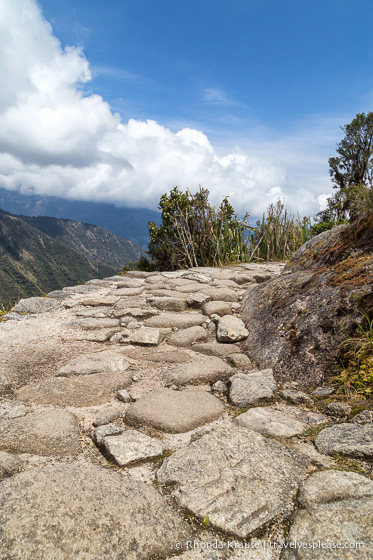 Stone path on the Inca Trail