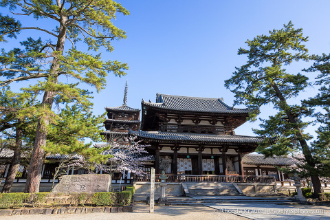 travelyesplease.com | Japan Rail Pass Guide- How to Buy and Use the JR Pass