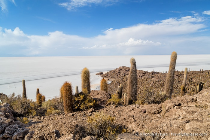 travelyesplease.com | What to Expect on Your First Trip to Bolivia: A First Time Visitor