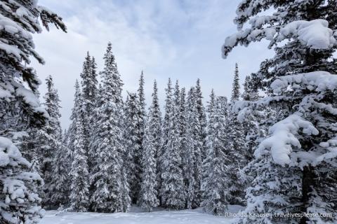 travelyesplease.com   4 Romantic Winter Getaways in Alberta, Canada