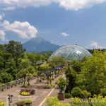 Visiting Tottori Hanakairo Flower Park- One of Japan's Largest Flower Parks