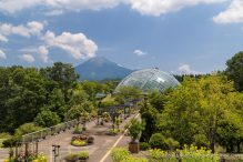 travelyesplease.com | Visiting Tottori Hanakairo Flower Park- One of Japan