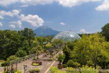 travelyesplease.com   Visiting Tottori Hanakairo Flower Park- One of Japan