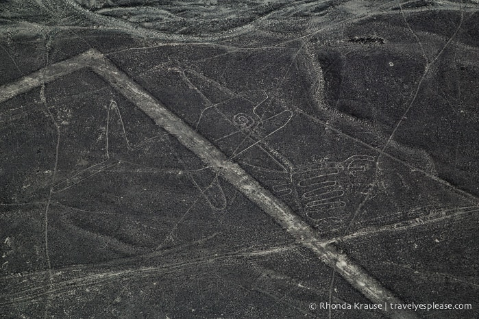 travelyesplease.com | Nazca Lines Flight- Flying Over Peru