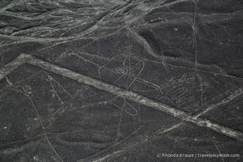 travelyesplease.com | Flying Over the Nazca Lines- Peru's Mysterious Geoglyphs