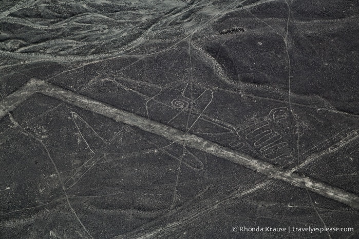 travelyesplease.com | Flying Over the Nazca Lines- Peru