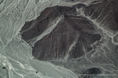 travelyesplease.com | Nazca Lines Flight- Flying Over Peru's Mysterious Geoglyphs