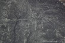 travelyesplease.com   Nazca Lines Flight- Flying Over Peru