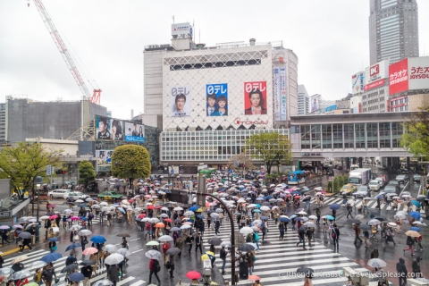 travelyesplease.com | Tokyo Itinerary- How to Spend 4 Days in Tokyo